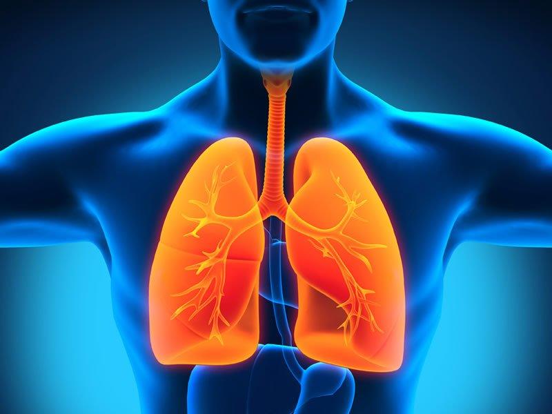 Akciğere ne iyi gelir? Akciğeri güçlendiren besinler, gıdalar, meyveler, bitkiler