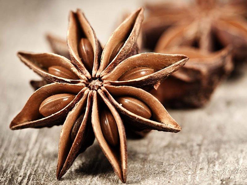 Anason nedir? Neye iyi gelir? Anason bitkisinin faydaları ve zararları
