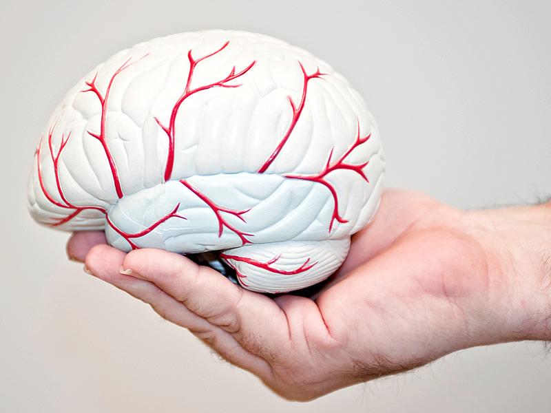 Beyin Kanaması Belirtileri Nelerdir? Tedavisi Nasıl Yapılır?