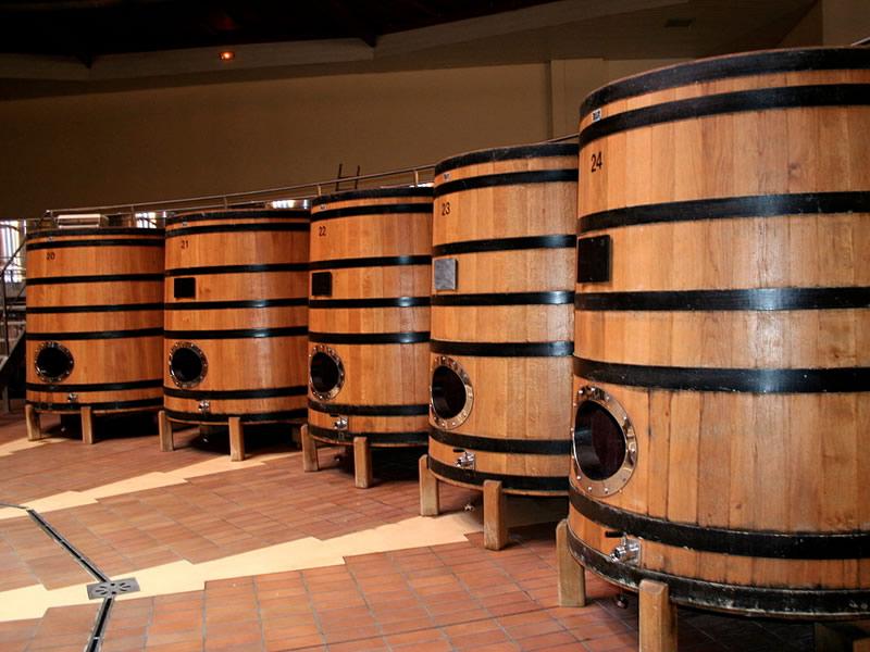 Bira mayasının özellikleri ve cilde faydaları