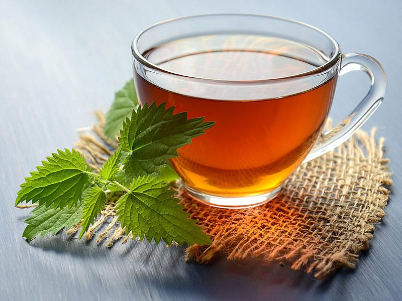 Isırgan Otu Çayı Nedir? Zayıflatır mı? Faydaları, Zararları, Kullananlar ve Yorumlar