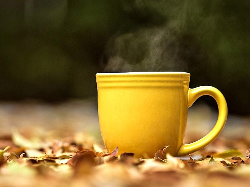 İştah Azaltıcı Bitki Çayları