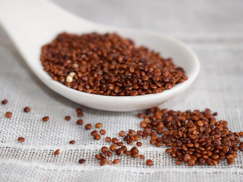 Kinoa çayı evde nasıl yapılır? Ne işe yarar? Fiyatı, kullanımı, faydaları ve zararları