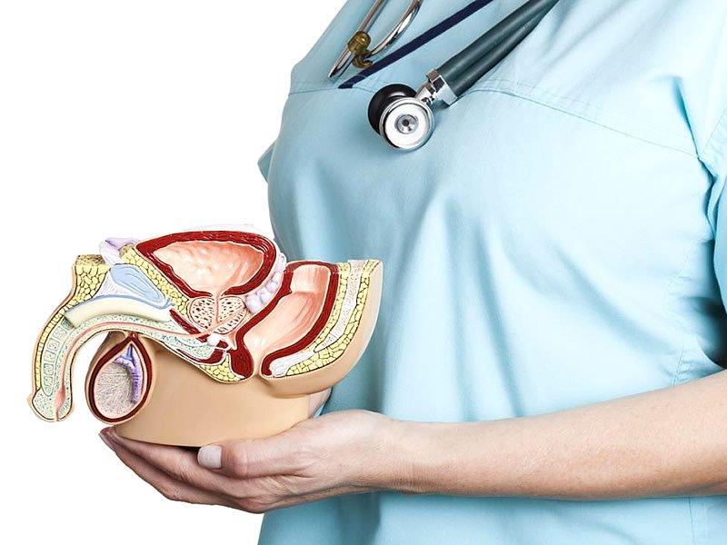 Prostata iyi gelen bitki, kür, yiyecekler ve çaylar nelerdir?