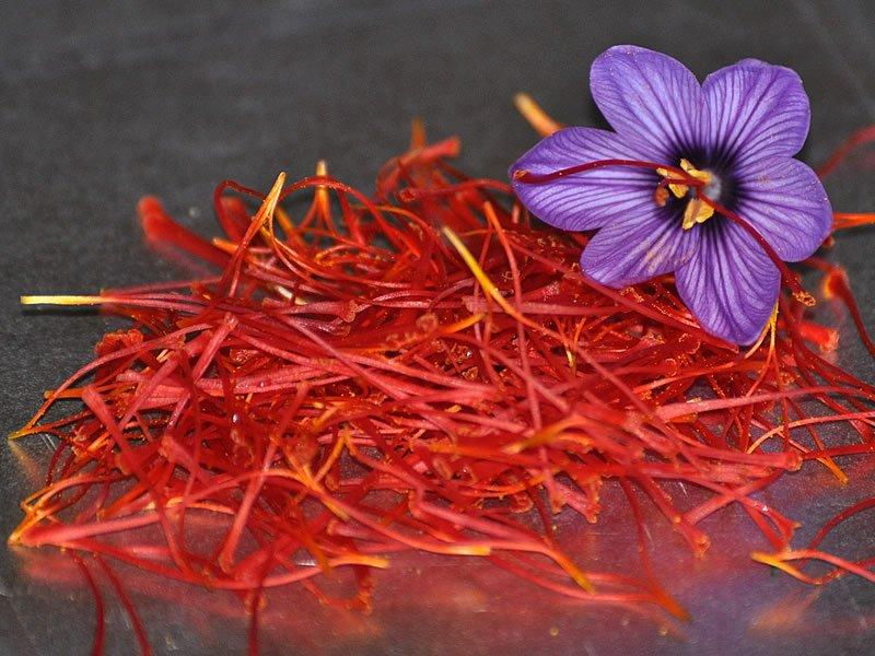 Safran çayı zayıflatırmı? Fiyatı, tarifi, kullanımı, faydaları ve zararları