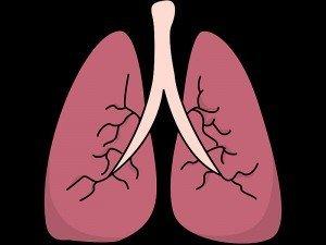 Akciğer bronşları nasıl temizlenir?