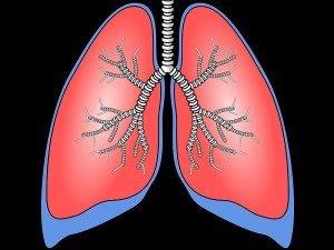 Akciğer ne kadar sürede kendini yeniler? Nasıl temizlenir?