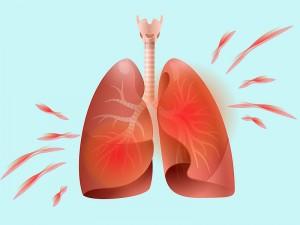 Akciğer Ne Kadar Zamanda Kendini Yeniler?