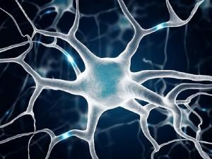 ALS hastalığının nedenleri, sebepleri ve belirtileri
