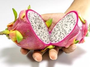 Armut çileği (Ejder meyvesi) meyvesi nedir? Nerede yetişir?