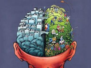 Beynin Sağ ve Sol Lobları Ne işe Yarar?