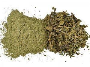 Cinnema çayı nasıl yapılır? Faydaları, zararları ve yan etkileri