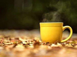 Dinçlik ve enerji veren bitki çayları nelerdir?