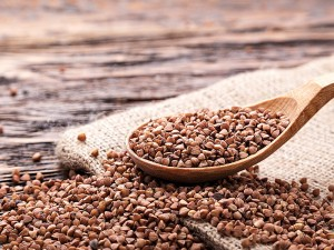 Greçka tohumlu çay nedir? Kullananlar, fiyatı, kullanımı, içeriği, faydaları ve zararları