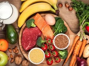 Holozoik beslenme grupları ve çeşitleri