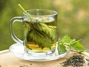 Isırgan çayı nasıl yapılır? Tarifi, faydaları, zararları, kullanımı