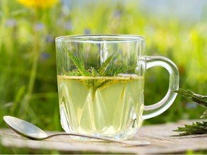 Isırgan otu çayı nasıl yapılır? Aç karnına içilirmi? Süt yaparmı? Nasıl kullanılır?