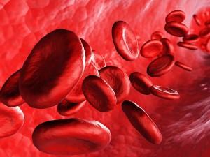 Kan yapıcı yiyecekler ve içecekler neler?