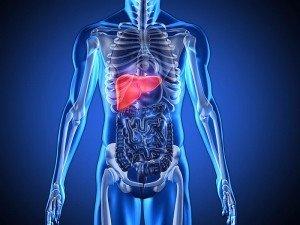 Karaciğer büyümesi nedir? Belirtileri nelerdir? Nelere yol açar?