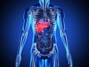 Karaciğerde nash nedir? Nash hastalığı belirtileri ve tedavisi