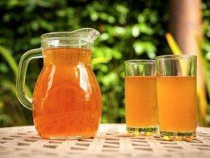 Kombu (kombucha) çayı nedir? Yapımı, Fiyatı, Faydaları, Kullanımı