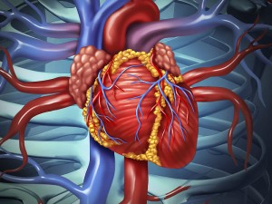 Koroner Arter Hastalığı Ne Demek? Tanı Yöntemleri Nelerdir?