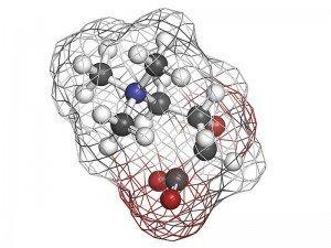 L'carnitine yağ yakıcı nedir? Nasıl kullanılır? Zayıflatırmı?