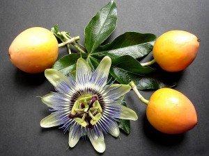 Maracuja meyvesi nedir? Nasıl yenir? Faydaları nelerdir?