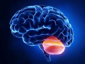 NCL(Beyincik erimesi) hastalığı tedavi yöntemleri
