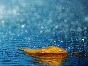 Nisan Yağmurunun Saça ve Cilde Faydaları Nelerdir?