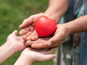 Organ Nakli Nedir? Organ Bağışının Şartları Nelerdir?