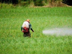 Pestisit ne demek? Pestisit kalıntısı nasıl temizlenir? Nasıl anlaşılır?