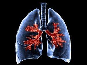 Sigarayı bıraktıktan sonra vücut ve ciğerler ne kadar sürede temizlenir?