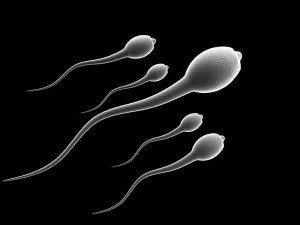 Sperm kalitesini artırmak için neler yapmalı?
