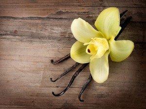 Vanilya nedir? Ne işe yarar? Nereden elde edilir? Vanilyanın faydaları ve zararları