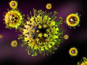Virüsten Korunma Yolları Nelerdir? Virüsler Nasıl Bulaşır?