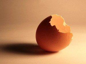 Yumurta kabuğunun ve yumurta kabuğu suyunun faydaları