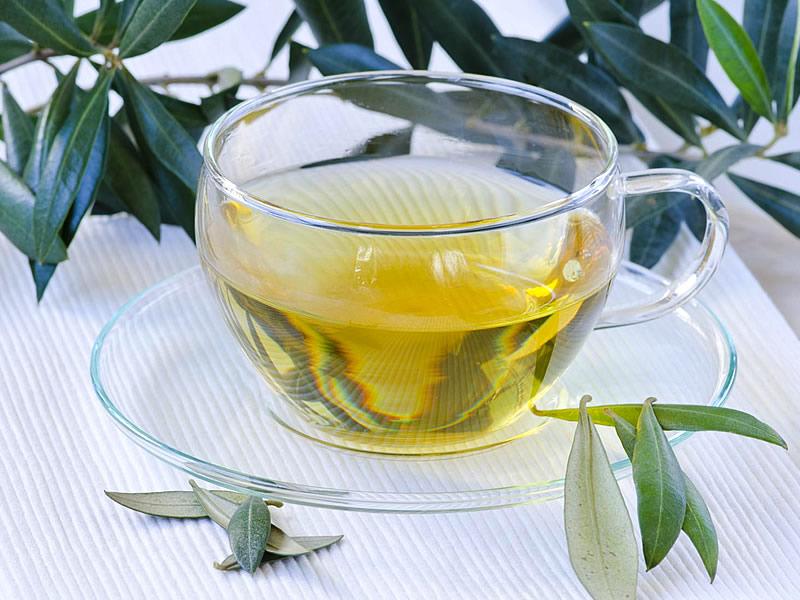 Zeytin yaprağı çayı nasıl yapılır? Zayıflatır mı? Fayda ve zararları